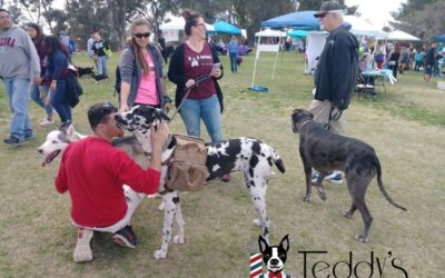 We had a blast last weekend at the WOOFstock festival!